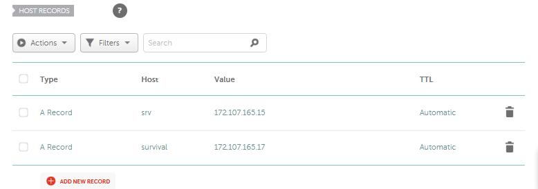 """El valor """"Host"""" sera usado antes del dominio; mc.bestcraft.world. """"mc"""" es el host, mientras que """"bestcraft.world"""" es el dominio. El """"value"""" será la IP numerica."""