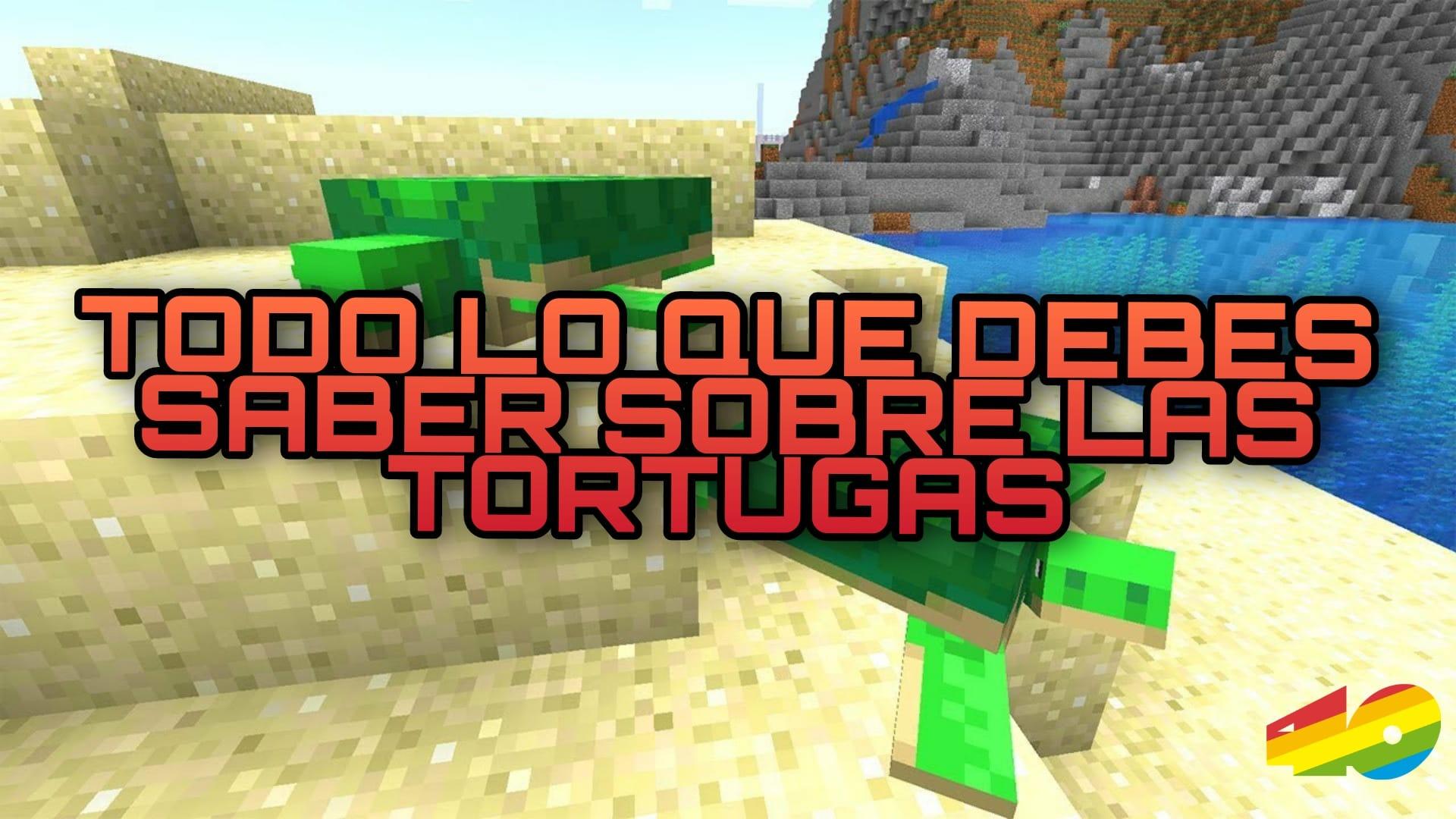 Minecraft: Todo lo que debes saber sobre las TORTUGAS 🐢