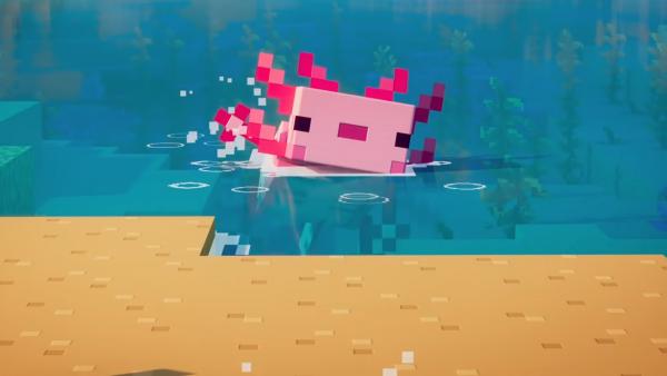 Todo lo que debes saber de los ajolotes en Minecraft